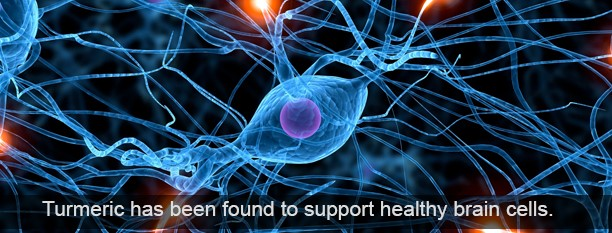 Curcumin and Brain Health